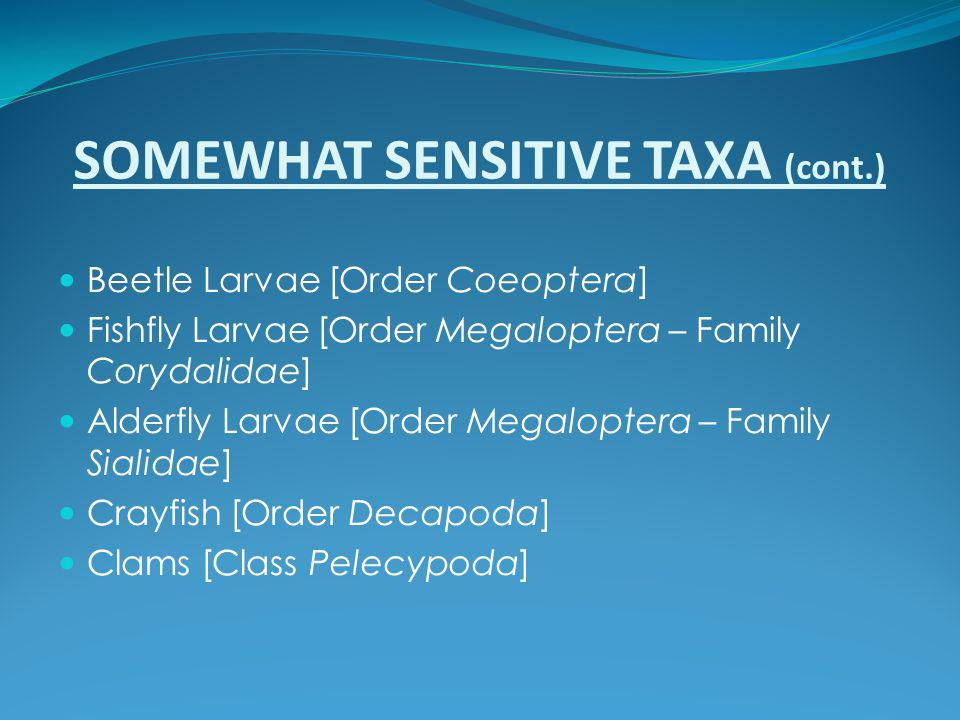 SOMEWHAT SENSITIVE TAXA (cont.)