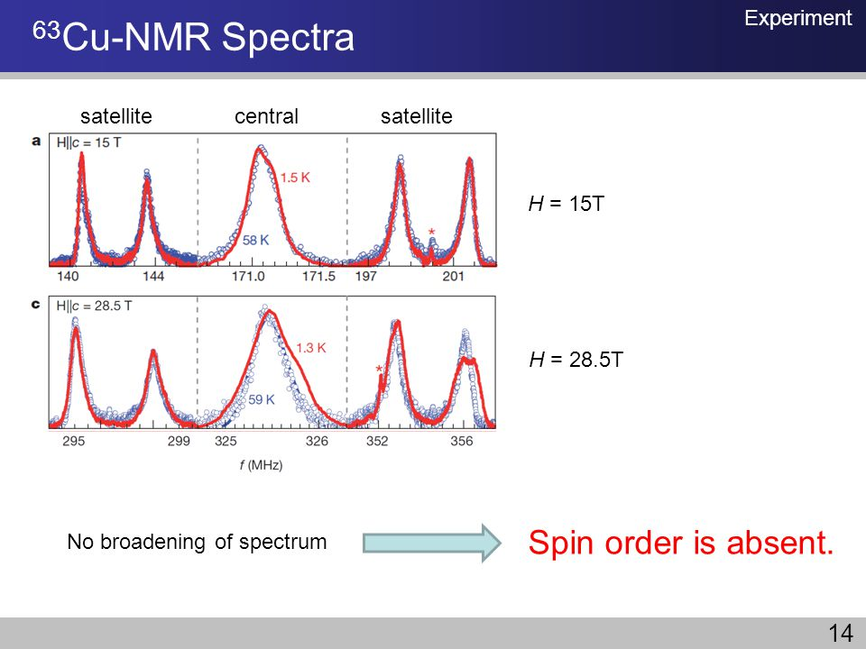 63Cu-NMR Spectra Spin order is absent. 14 Experiment satellite central