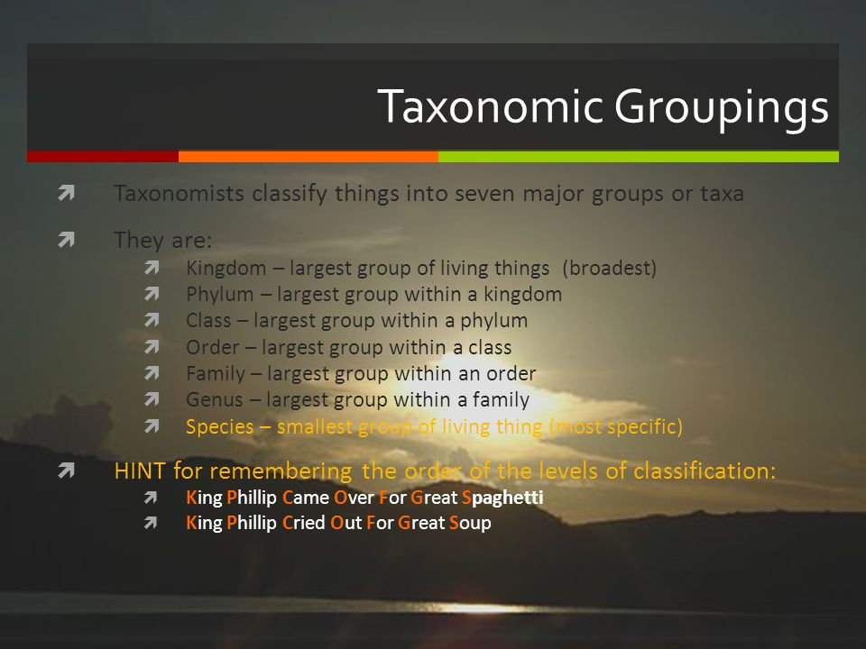 Taxonomic Groupings Taxonomists classify things into seven major groups or taxa. They are: Kingdom – largest group of living things (broadest)