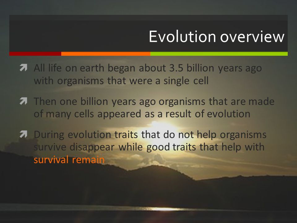 Evolution overview All life on earth began about 3.5 billion years ago with organisms that were a single cell.