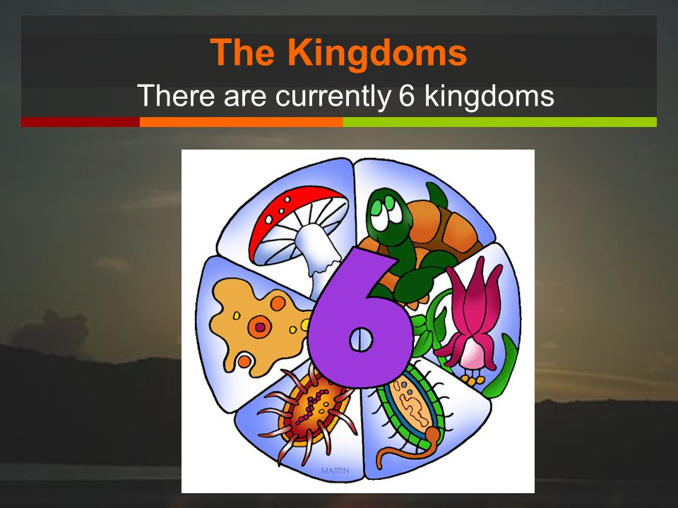 The Kingdoms There are currently 6 kingdoms