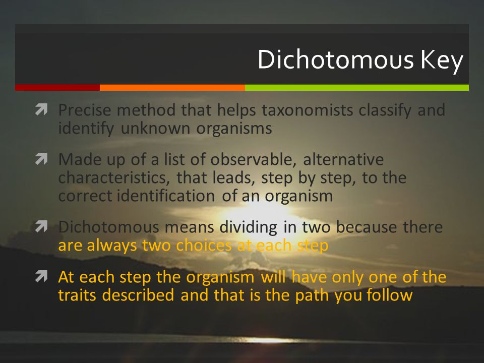 Dichotomous Key Precise method that helps taxonomists classify and identify unknown organisms.