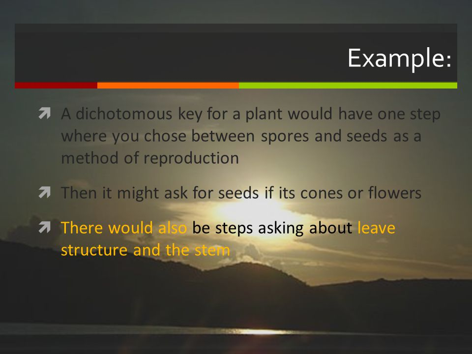Example: A dichotomous key for a plant would have one step where you chose between spores and seeds as a method of reproduction.