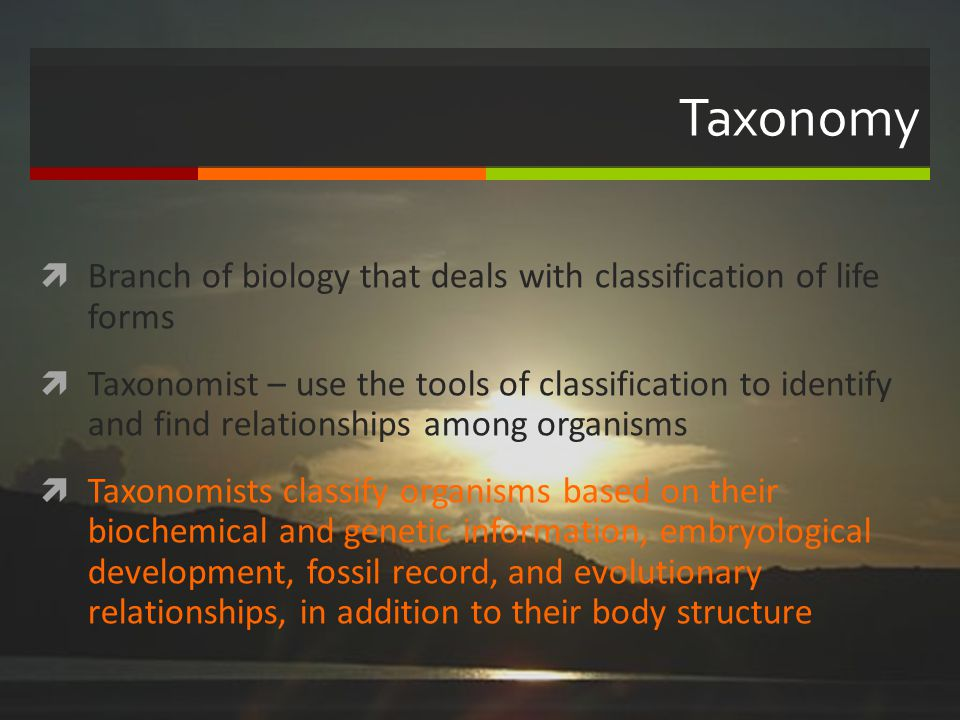 Taxonomy Branch of biology that deals with classification of life forms.