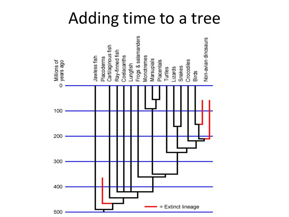 Adding time to a tree
