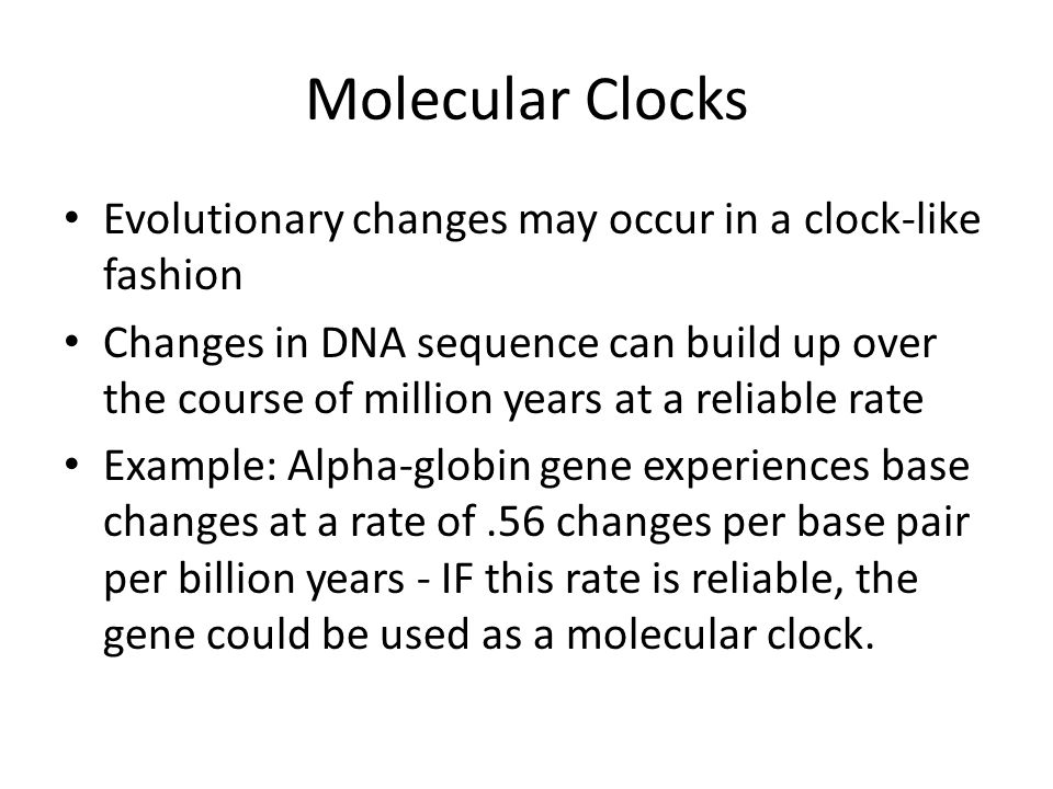 Molecular Clocks Evolutionary changes may occur in a clock-like fashion.
