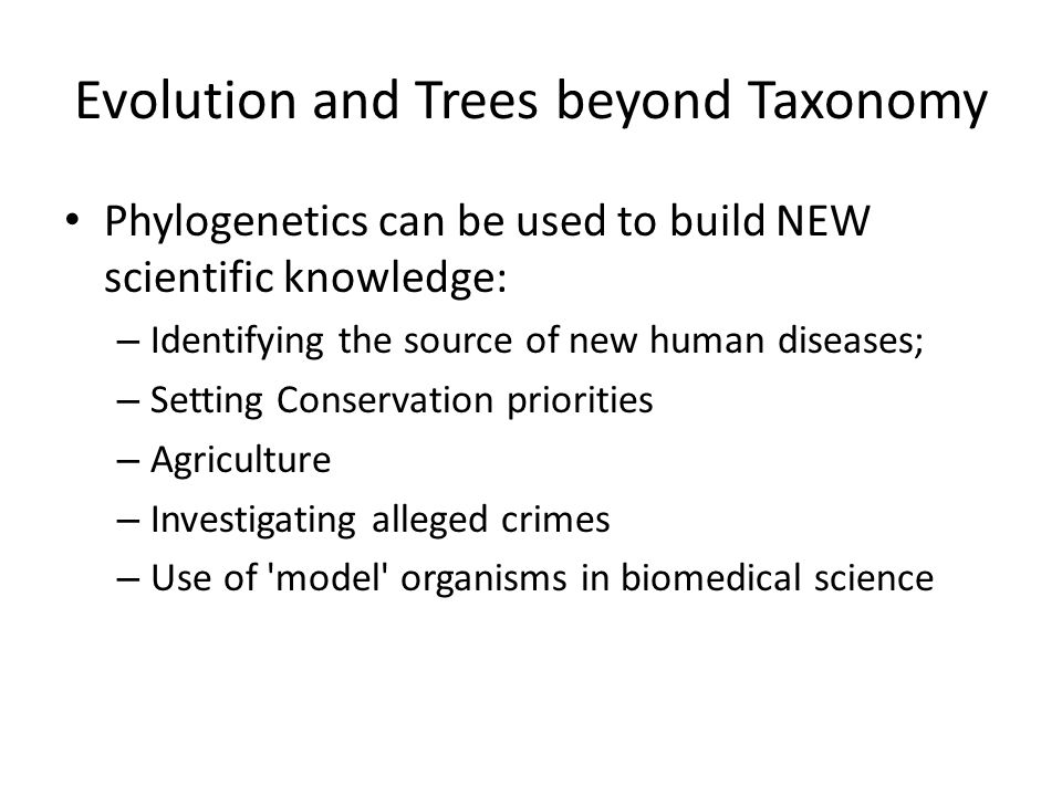Evolution and Trees beyond Taxonomy