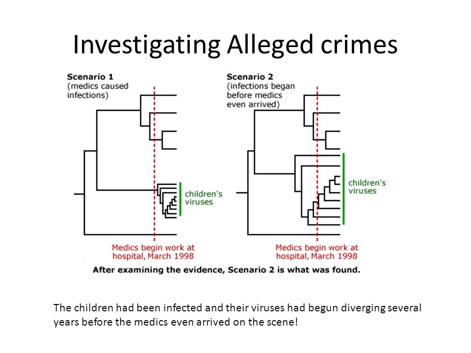 Investigating Alleged crimes
