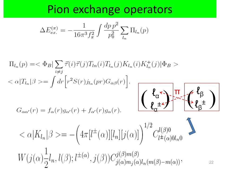 Pion exchange operators