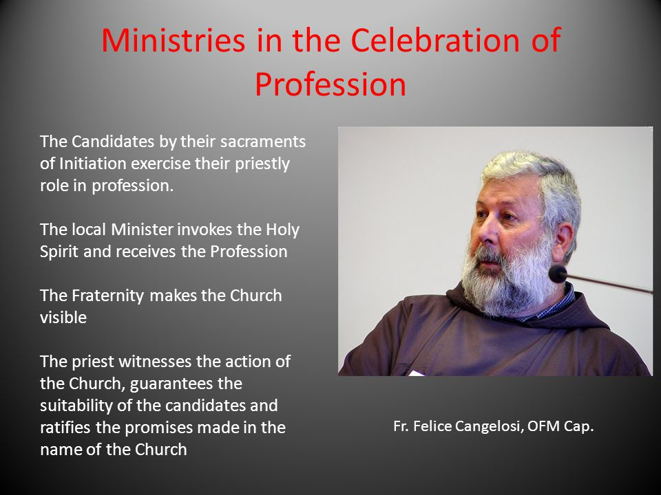 Ministries in the Celebration of Profession