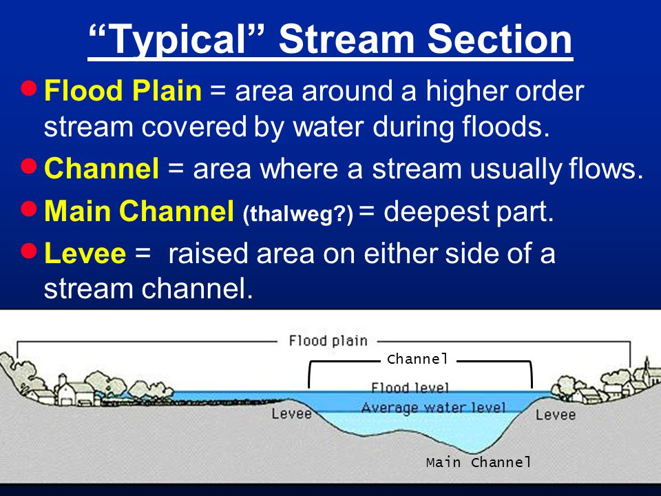 Typical Stream Section