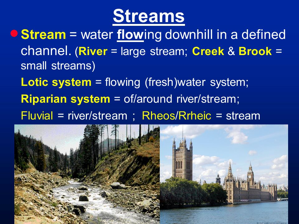 Streams Stream = water flowing downhill in a defined channel. (River = large stream; Creek & Brook = small streams)