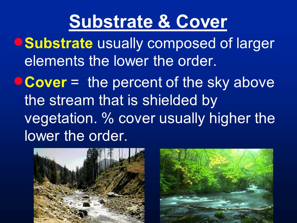 Substrate & Cover Substrate usually composed of larger elements the lower the order.