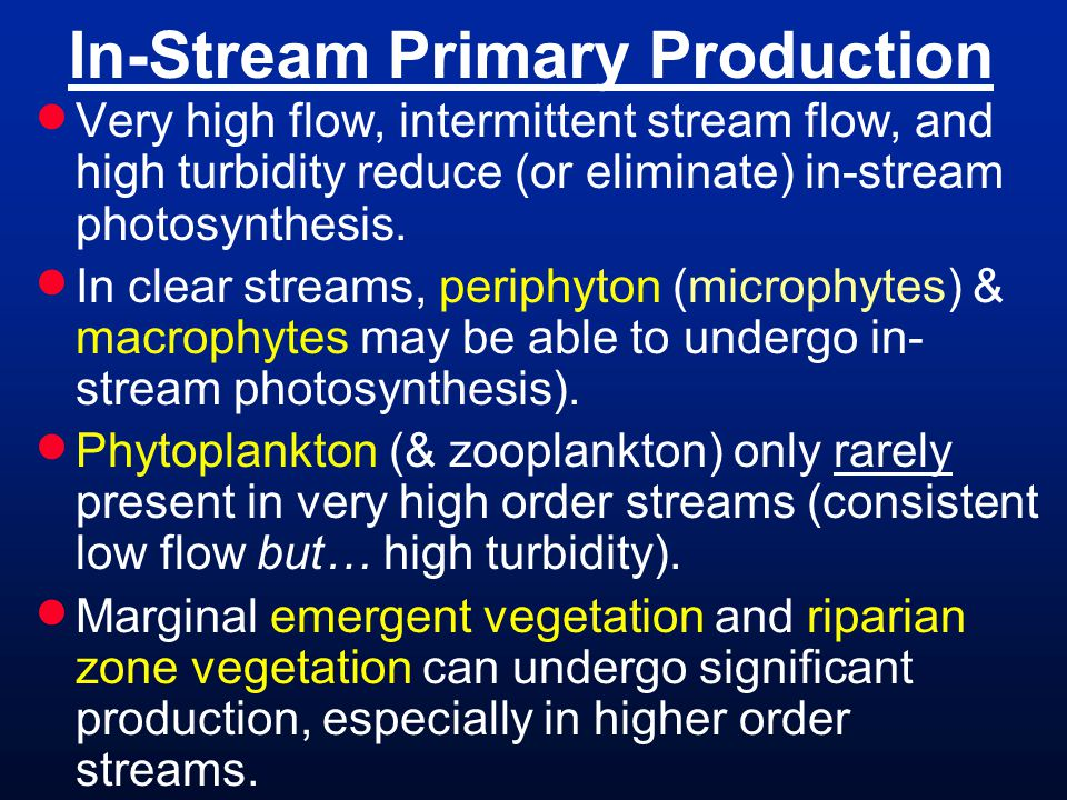 In-Stream Primary Production