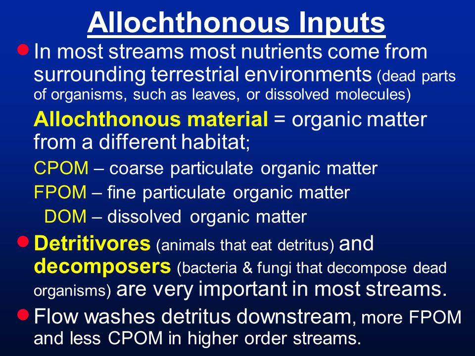 Allochthonous Inputs