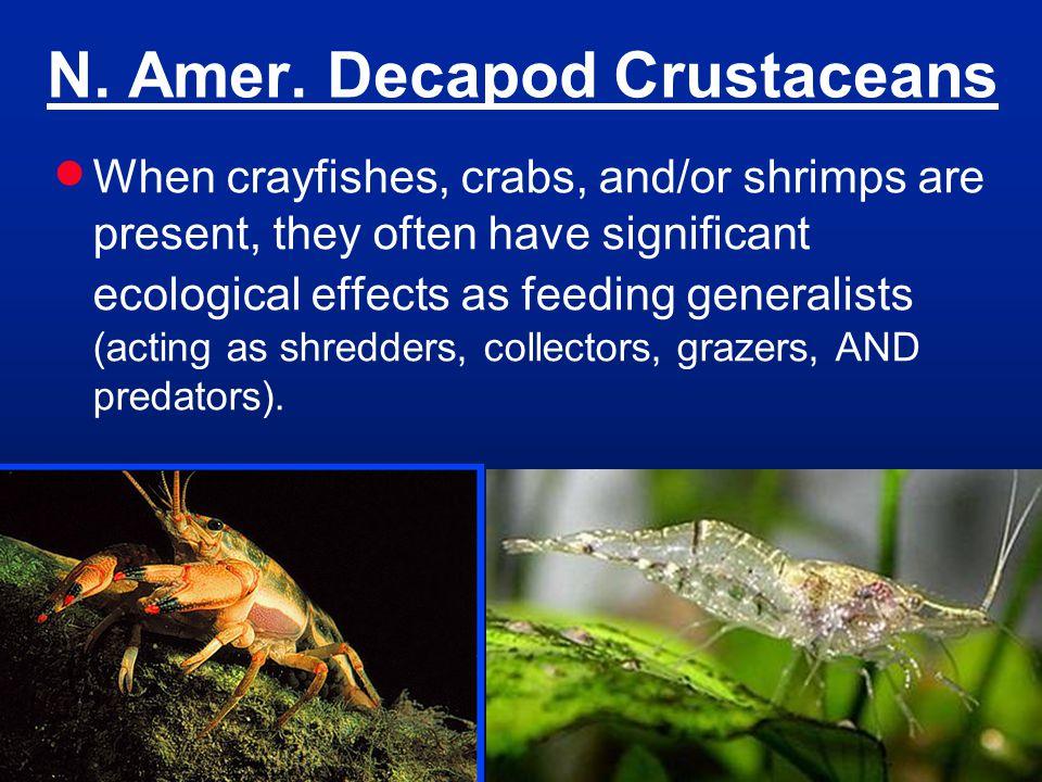 N. Amer. Decapod Crustaceans