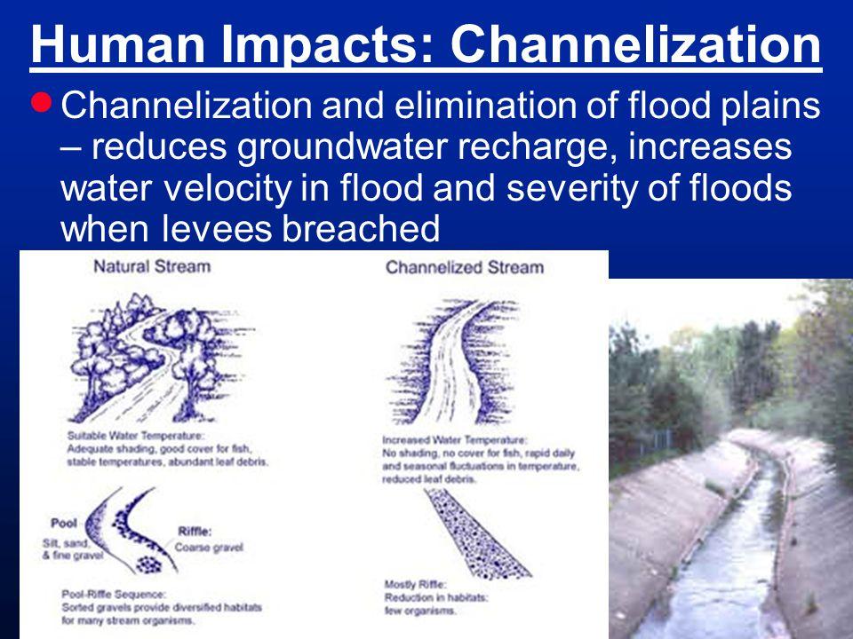Human Impacts: Channelization