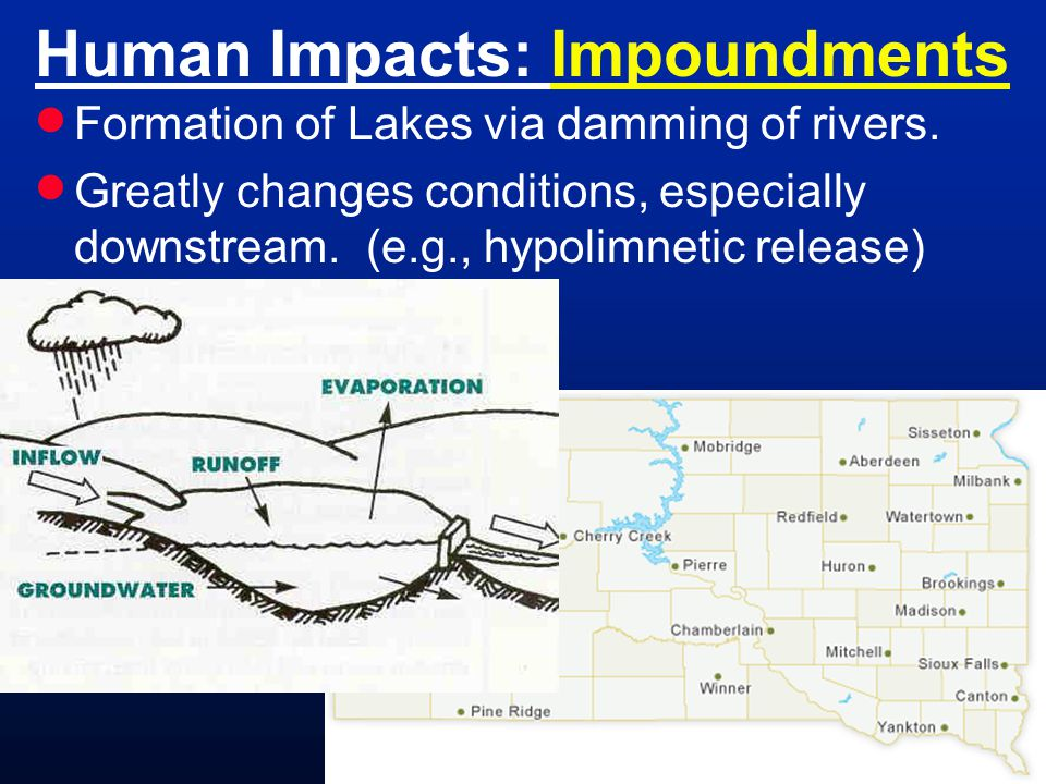 Human Impacts: Impoundments