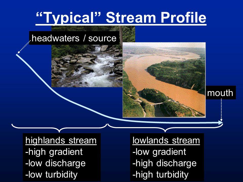 Typical Stream Profile