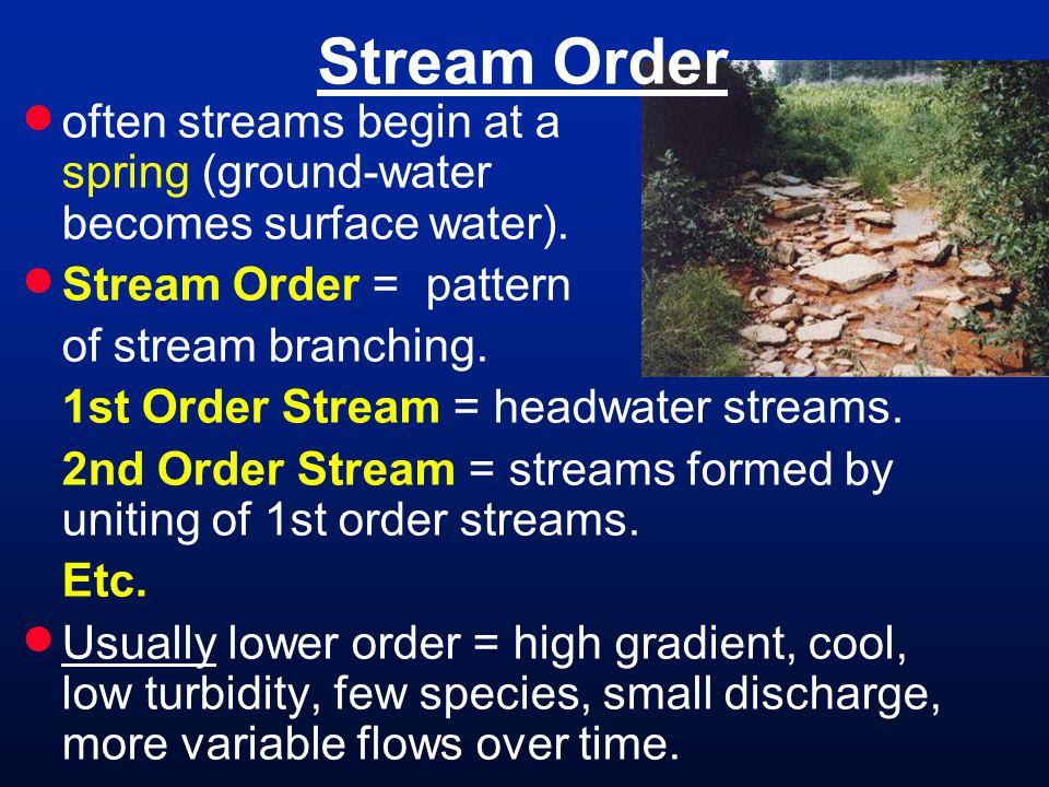 Stream Order often streams begin at a spring (ground-water