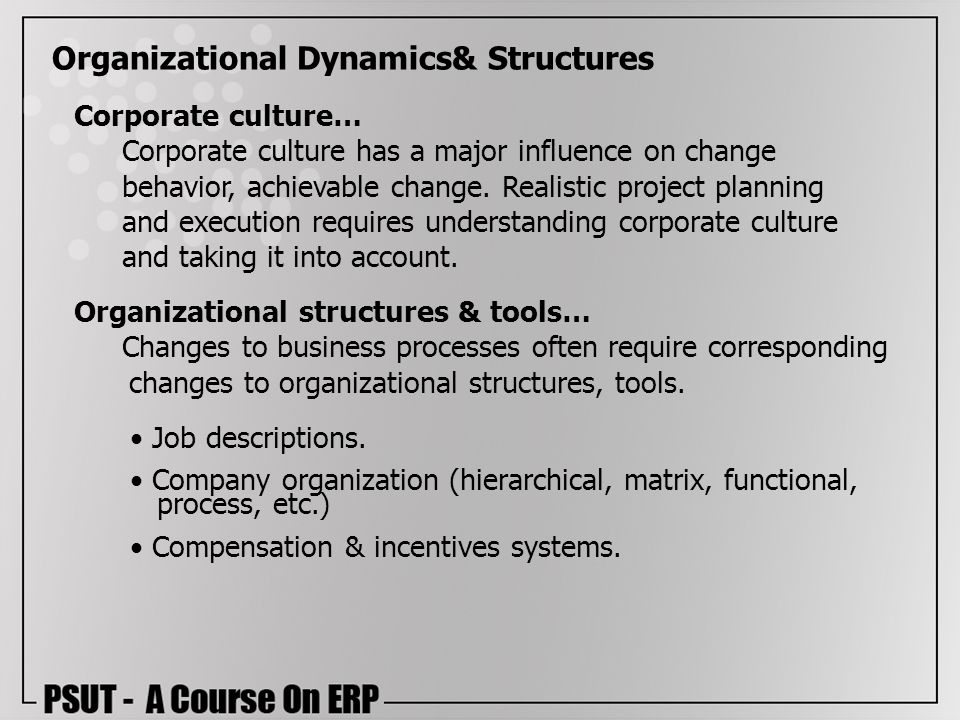 Organizational Dynamics& Structures