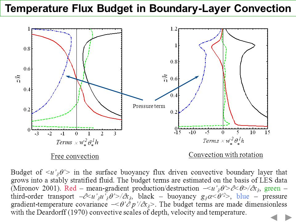 Temperature Flux Budget in Boundary-Layer Convection