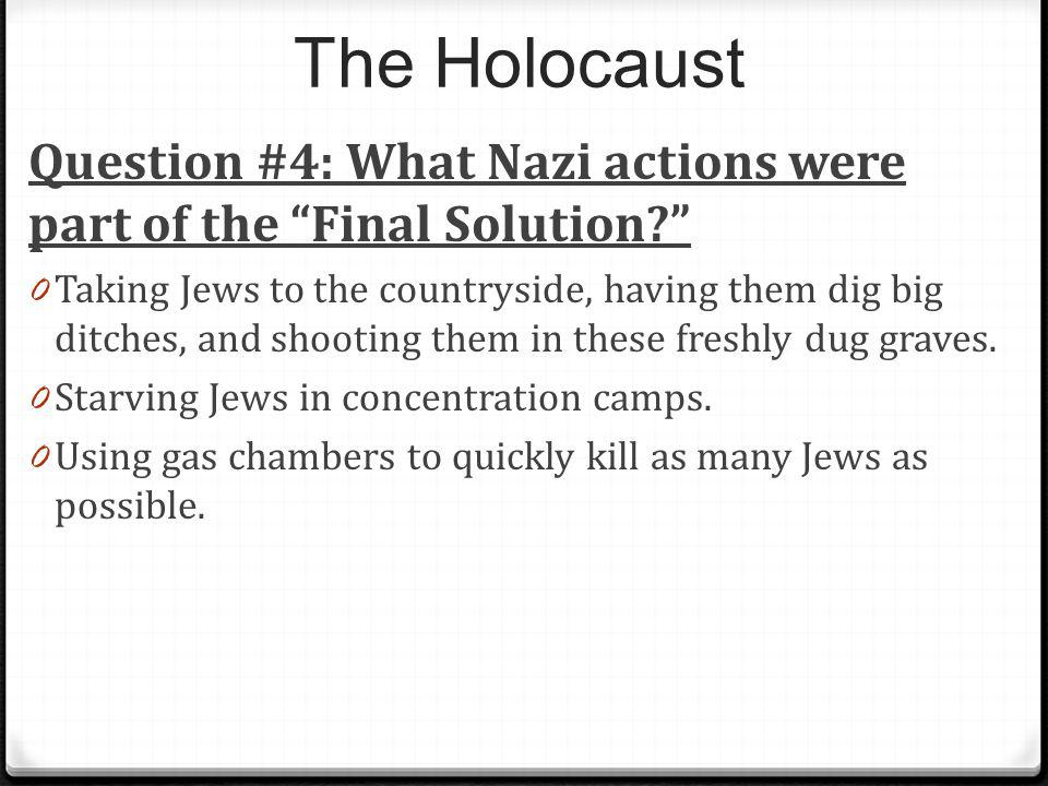 The Holocaust Question #4: What Nazi actions were part of the Final Solution