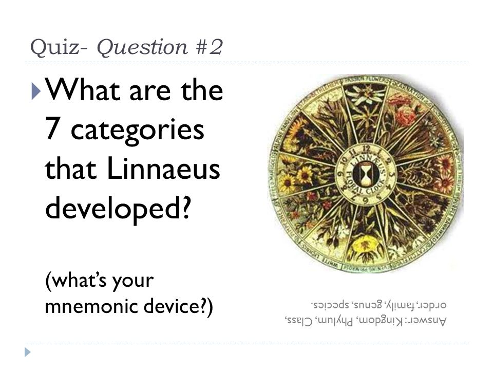 Quiz- Question #2 What are the 7 categories that Linnaeus developed (what's your mnemonic device )