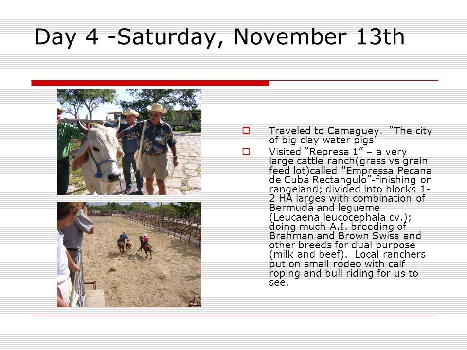 Day 4 -Saturday, November 13th