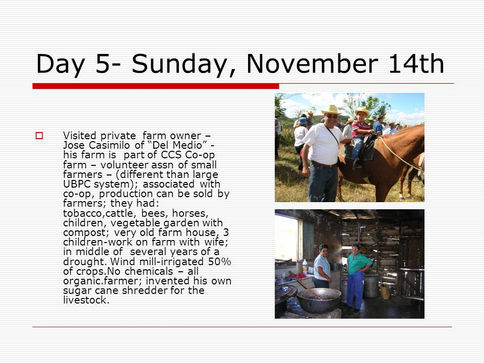 Day 5- Sunday, November 14th