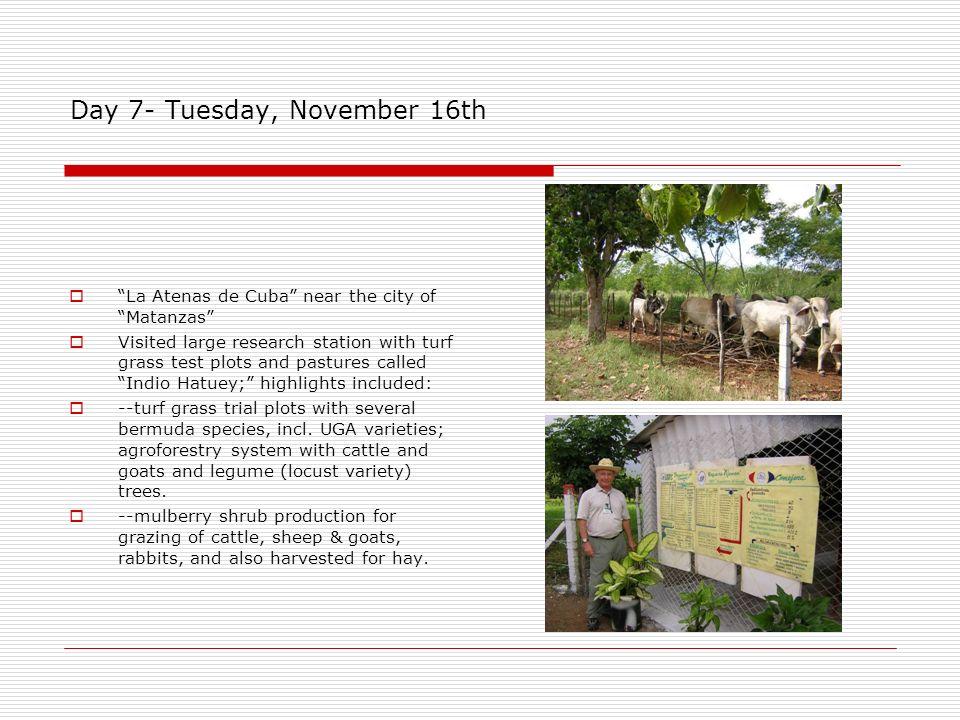 Day 7- Tuesday, November 16th