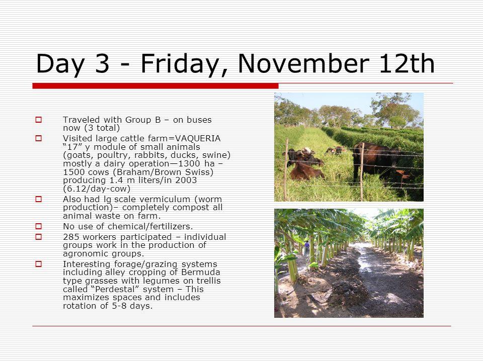Day 3 - Friday, November 12th