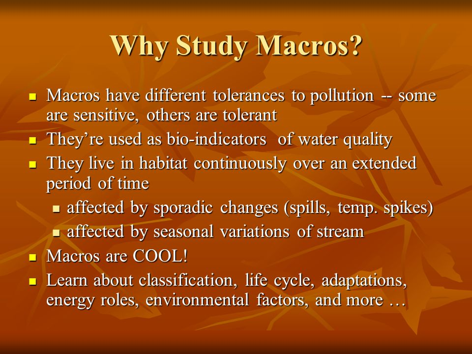Why Study Macros Macros have different tolerances to pollution -- some are sensitive, others are tolerant.