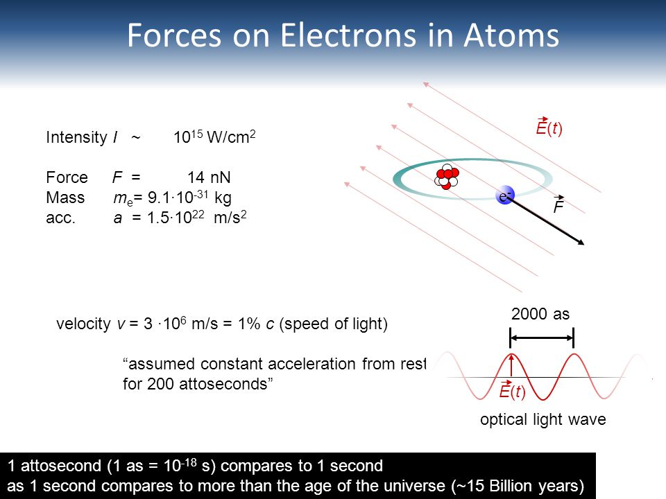 Forces on Electrons in Atoms