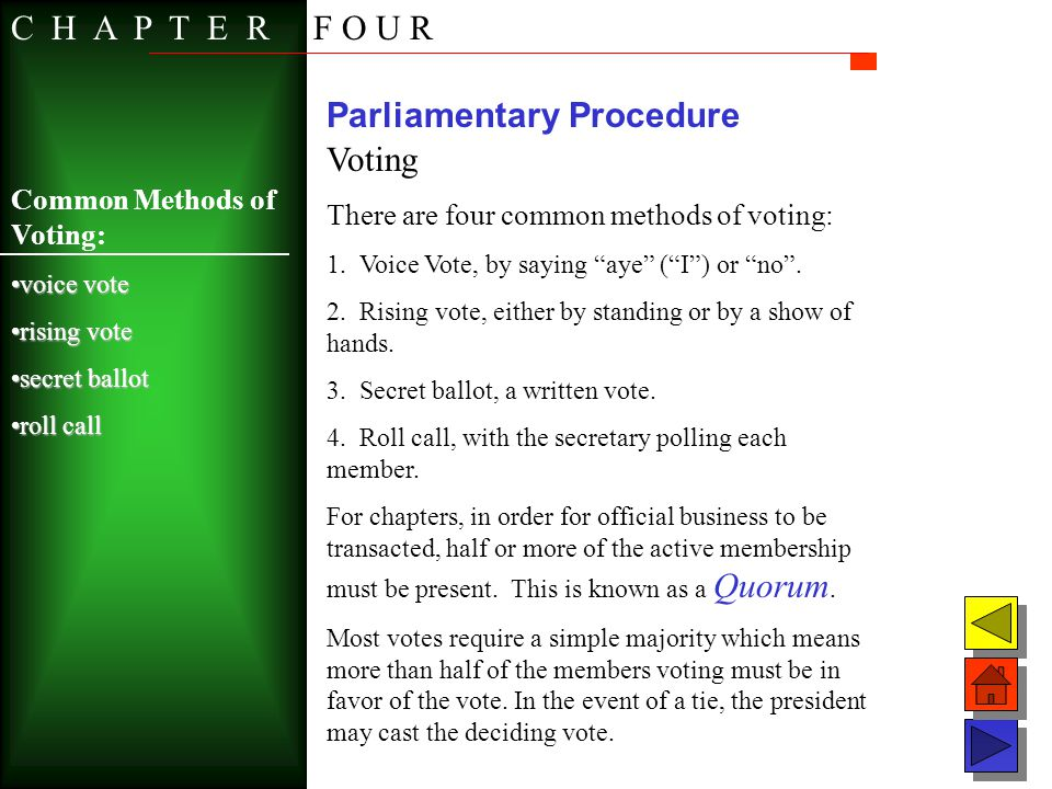 Parliamentary Procedure Voting