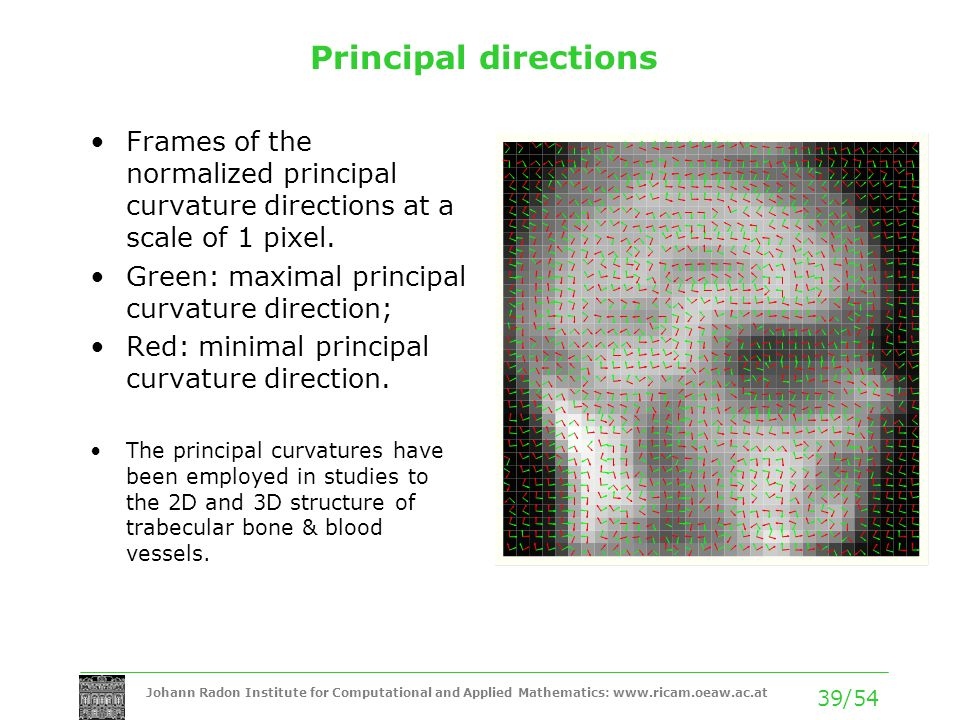 Principal directions Frames of the normalized principal curvature directions at a scale of 1 pixel.