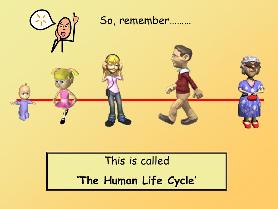 So, remember……… This is called 'The Human Life Cycle'