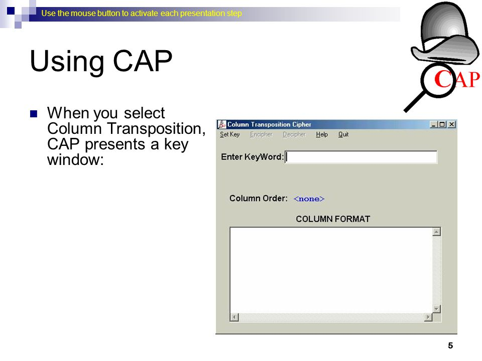 Using CAP When you select Column Transposition, CAP presents a key window: