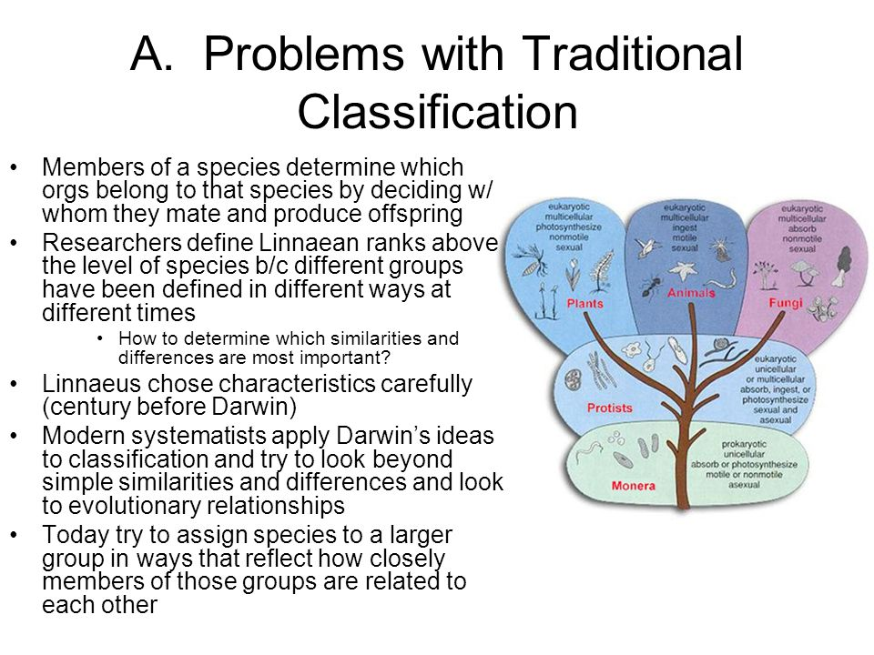 A. Problems with Traditional Classification