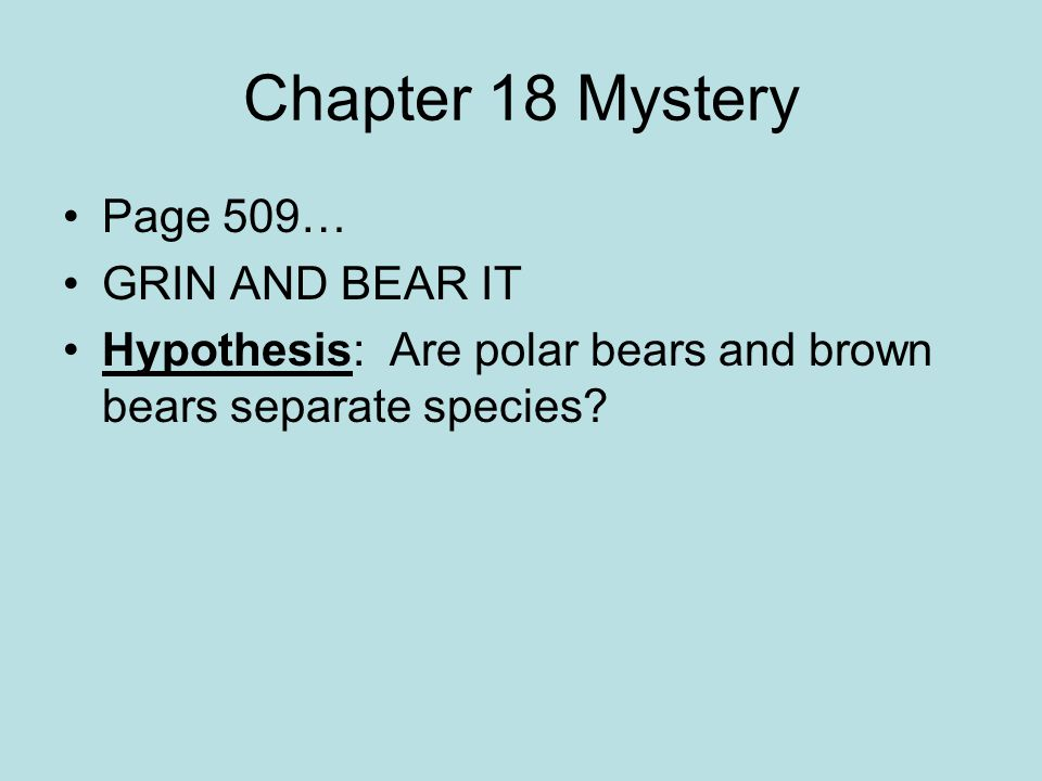 Chapter 18 Mystery Page 509… GRIN AND BEAR IT