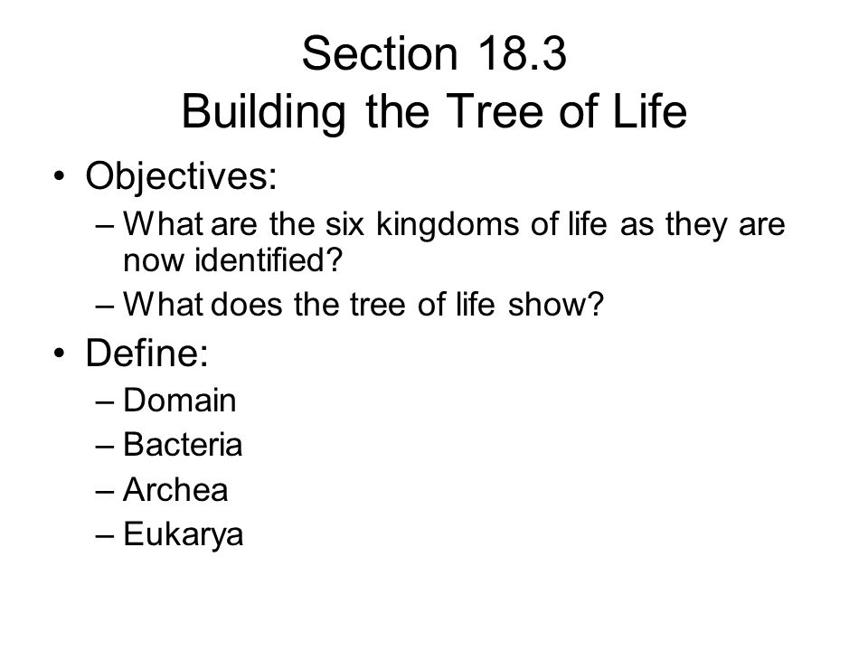 Section 18.3 Building the Tree of Life