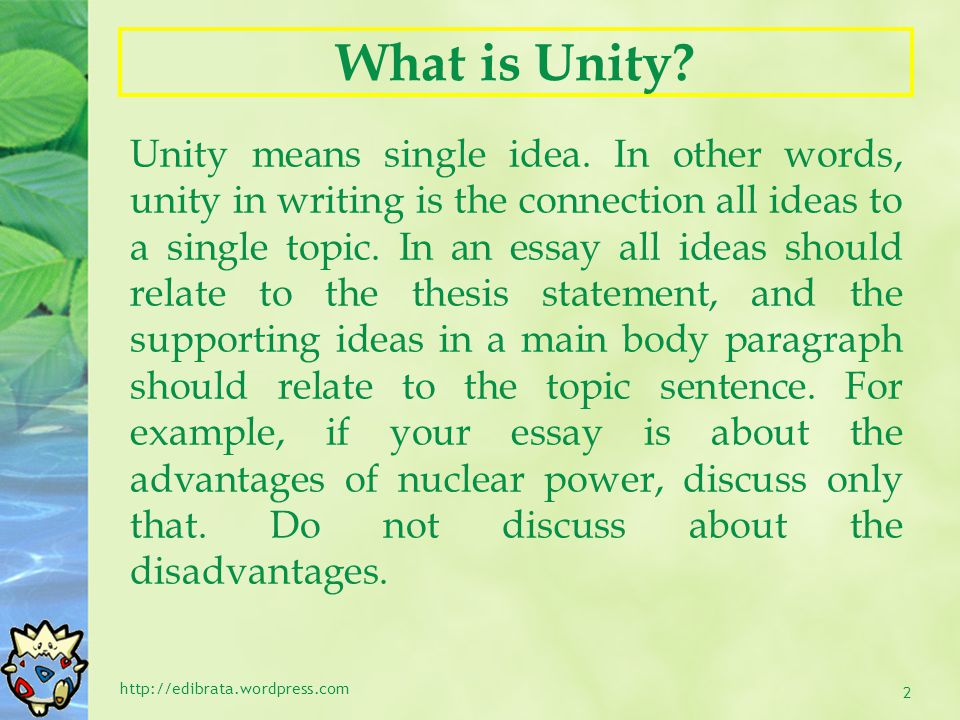 What is Unity