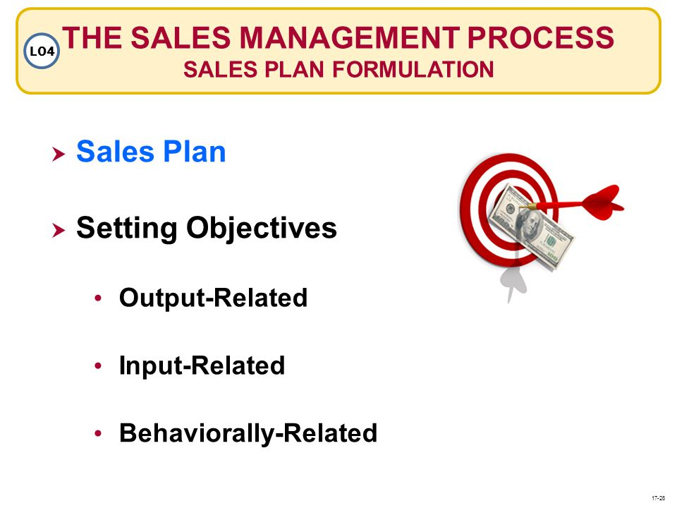 THE SALES MANAGEMENT PROCESS SALES PLAN FORMULATION