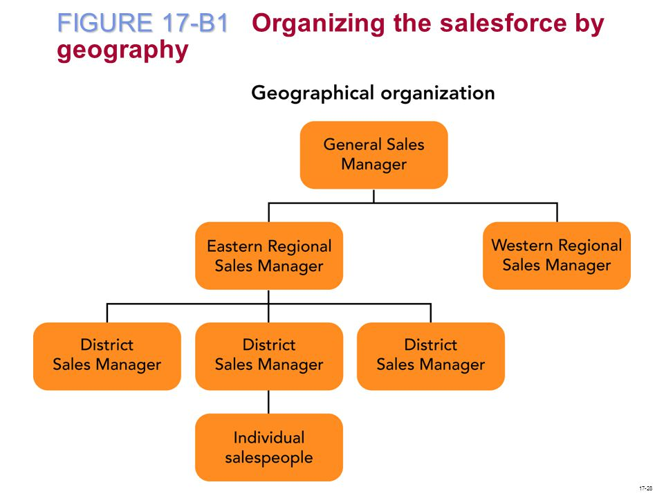 FIGURE 17-B1 Organizing the salesforce by geography