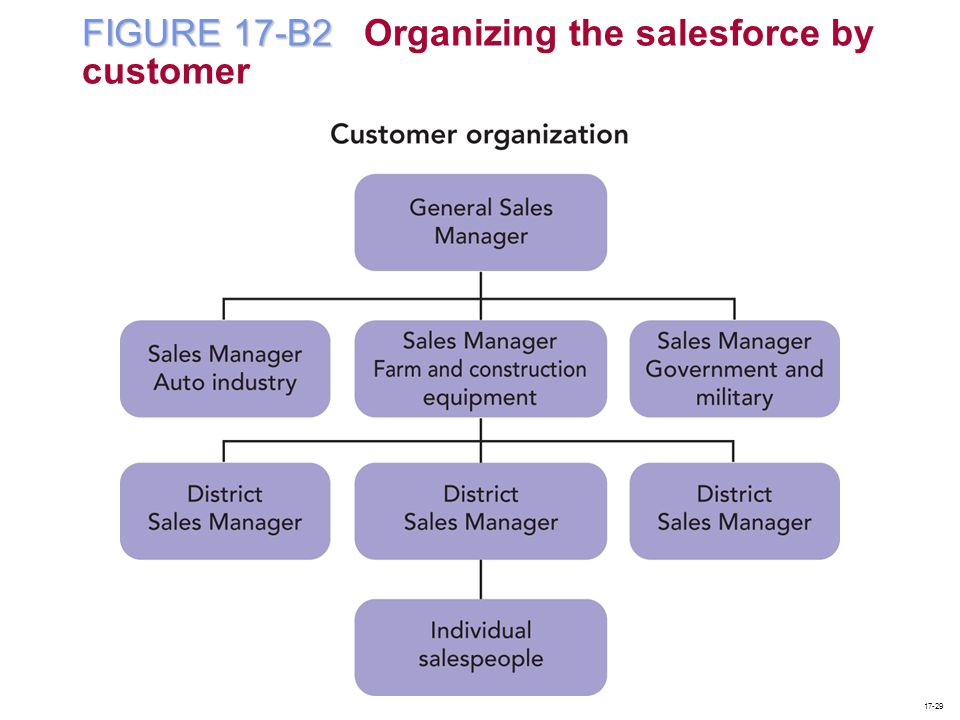 FIGURE 17-B2 Organizing the salesforce by customer