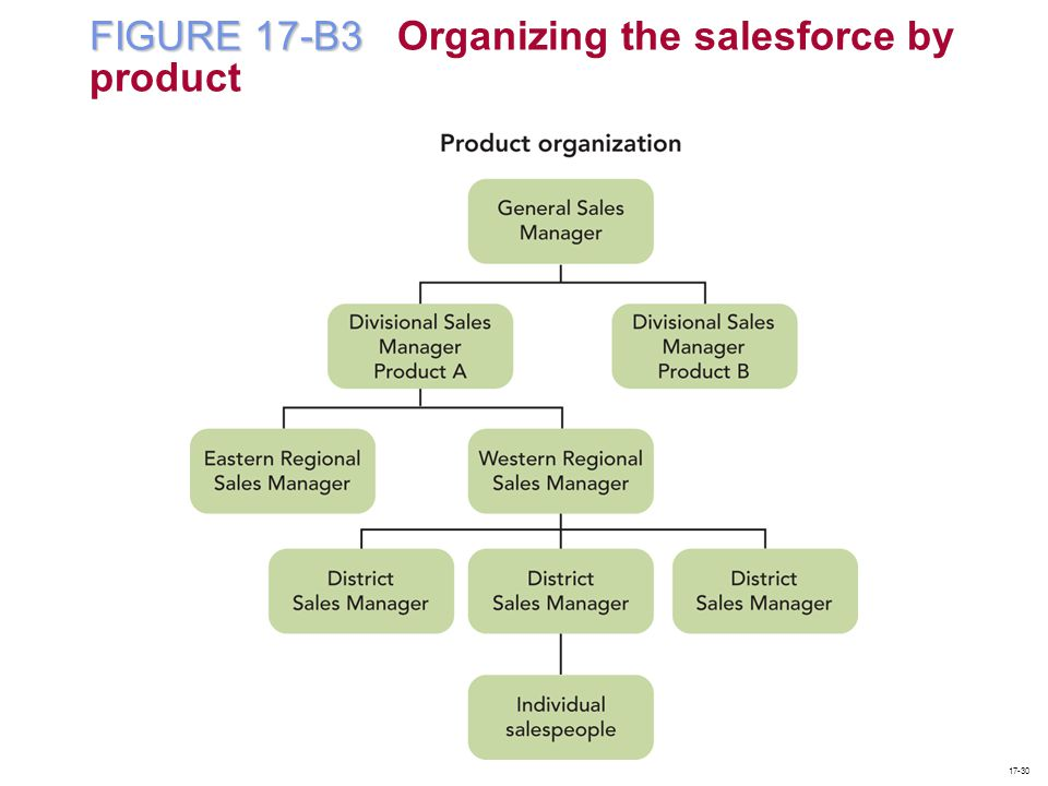 FIGURE 17-B3 Organizing the salesforce by product