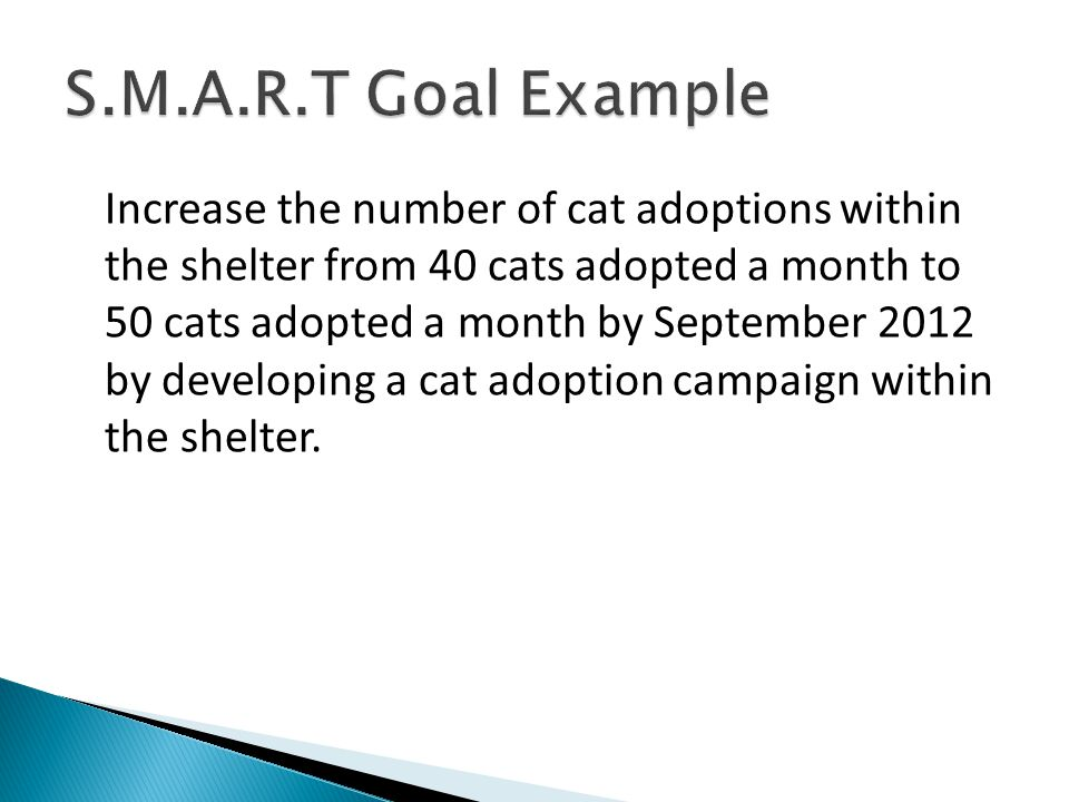 S.M.A.R.T Goal Example