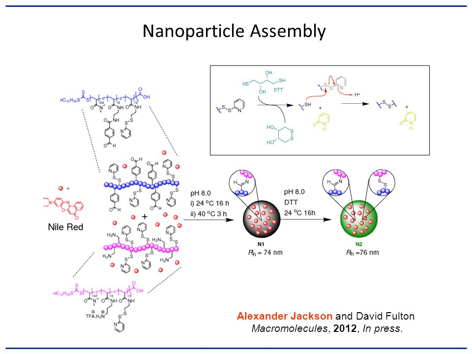 Nanoparticle Assembly