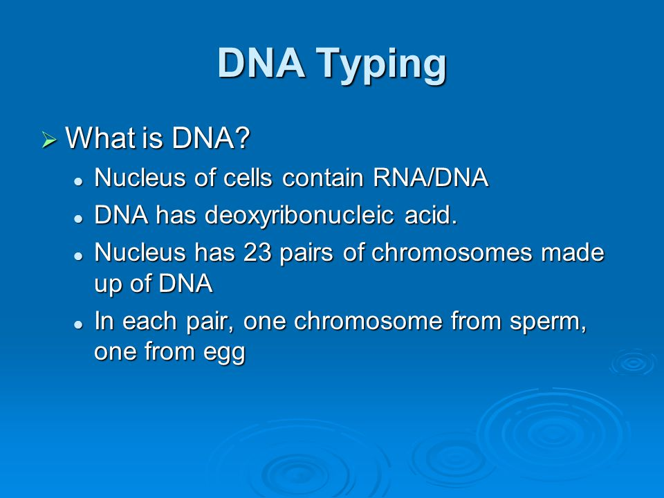 DNA Typing What is DNA Nucleus of cells contain RNA/DNA