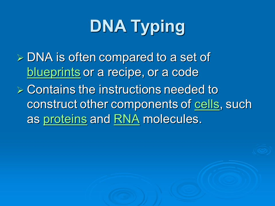 DNA Typing DNA is often compared to a set of blueprints or a recipe, or a code.
